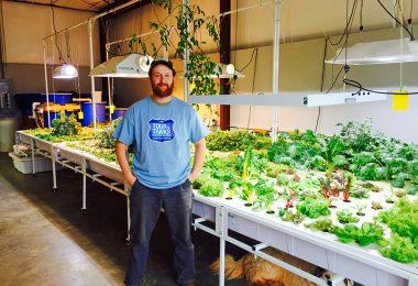West Asheville Aquaponic Farming