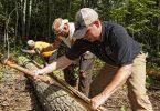 Repurposed Tree Bark from Highland Craftsmen