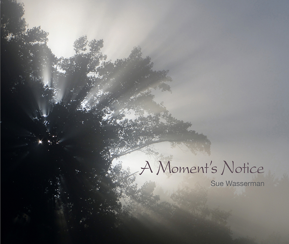 A Moment's Notice Nature Photography by Sue Wasserman