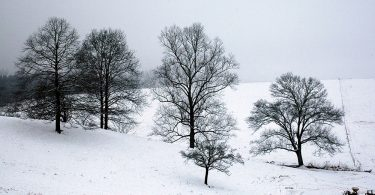 Appalachian Land Trusts