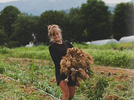 Organic Growers School revamps apprentice link