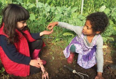 Farms That Teach