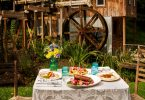 Asheville Agritourism Farm to Table Tours