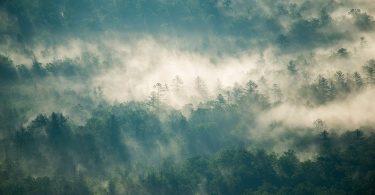 Conservation Corner: Concerns for Land Protection