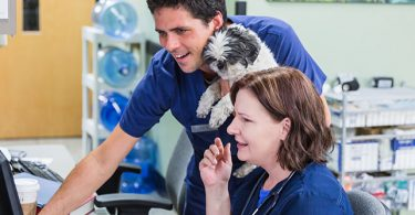 REACH Veterinary Specialists