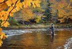 Autumn Fly Fishing with Southern Appalachian Anglers
