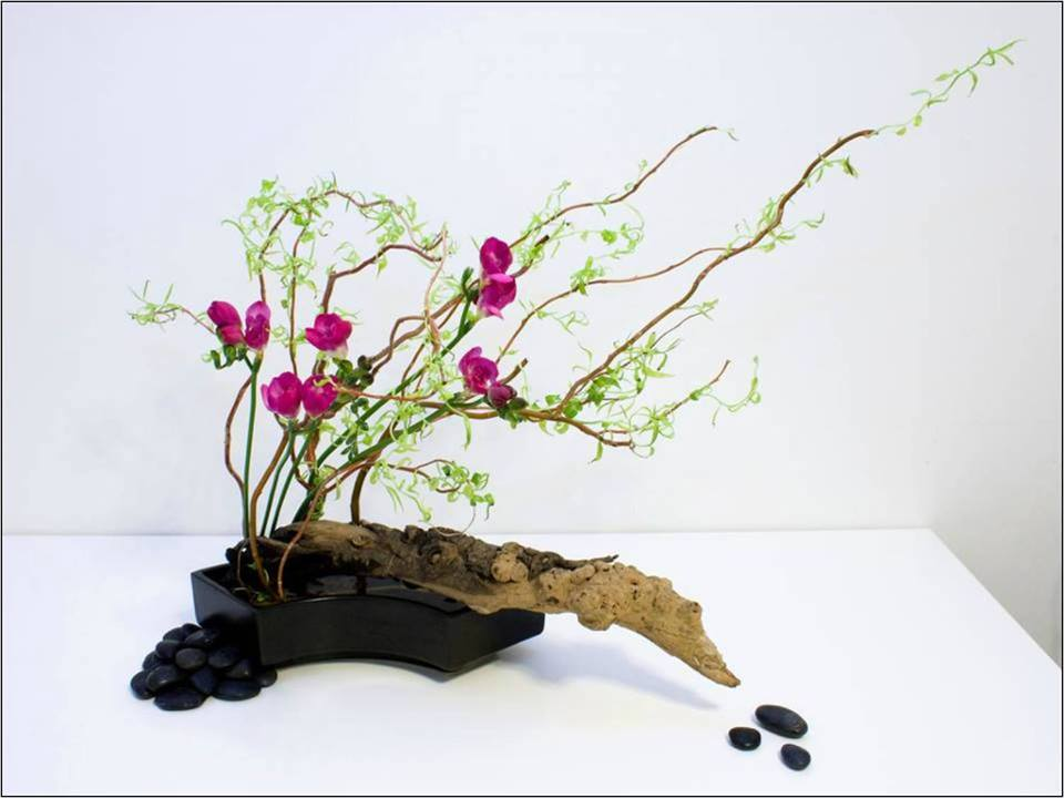 ikebana  the japanese art of flower arrangement  peace and harmony