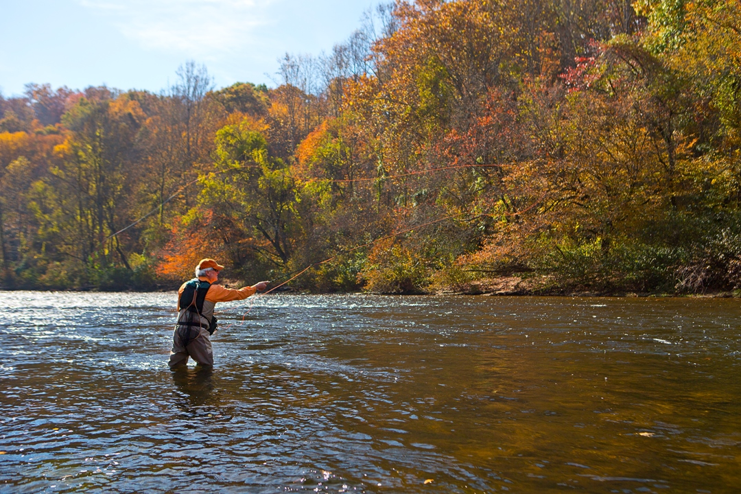The fabulous fall fly fishing forecast the laurel of for Fishing season nc