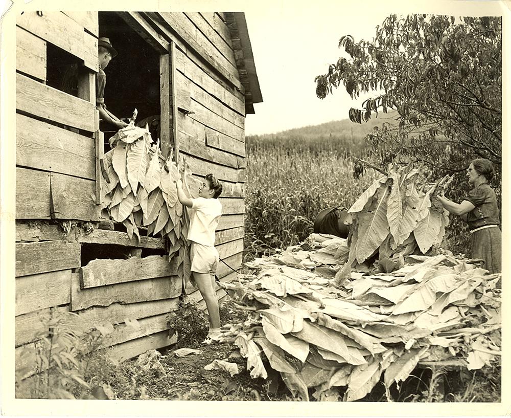 Appalachian Barn History