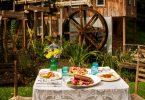 Asheville Agritourism Farm to Table Tours