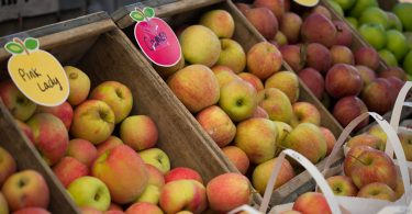 The NC Apple Festival in Hendersonville