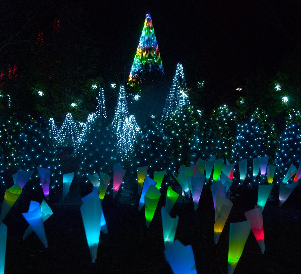 Winter Lights Returns To Nc Arboretum The Laurel Of