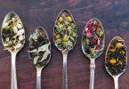 Asheville Tea Company Brews Local Flavors