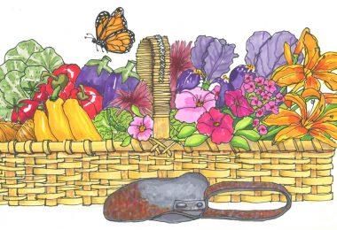 Literary Gardener: Our Mothers' Gardens