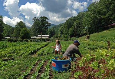 ASAP Farm Tour Celebrates 10 Years
