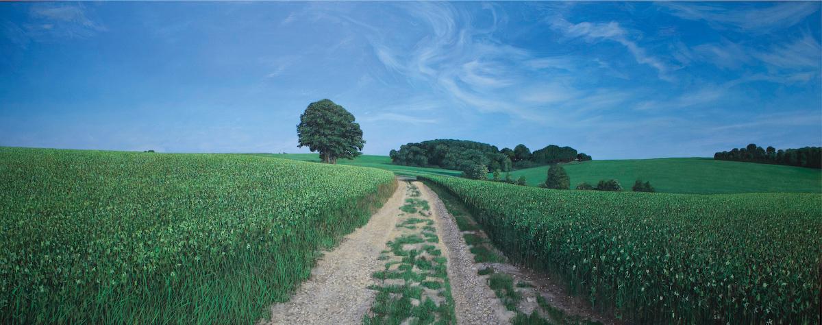 History in Landscapes at Blue Spiral 1