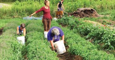 26th Annual Organic Growers School Spring Conference