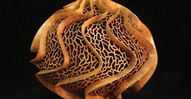 Attenuation mesquite. Paul Fennell, artist
