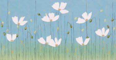 White Poppies. Sarah Faulkner, artist
