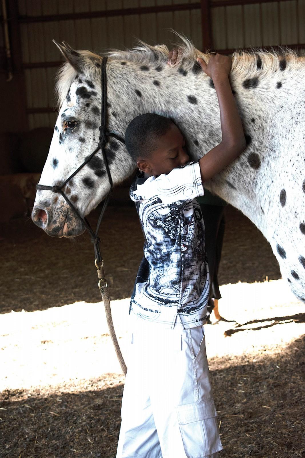 Spotlight On: Heart of Horse Sense