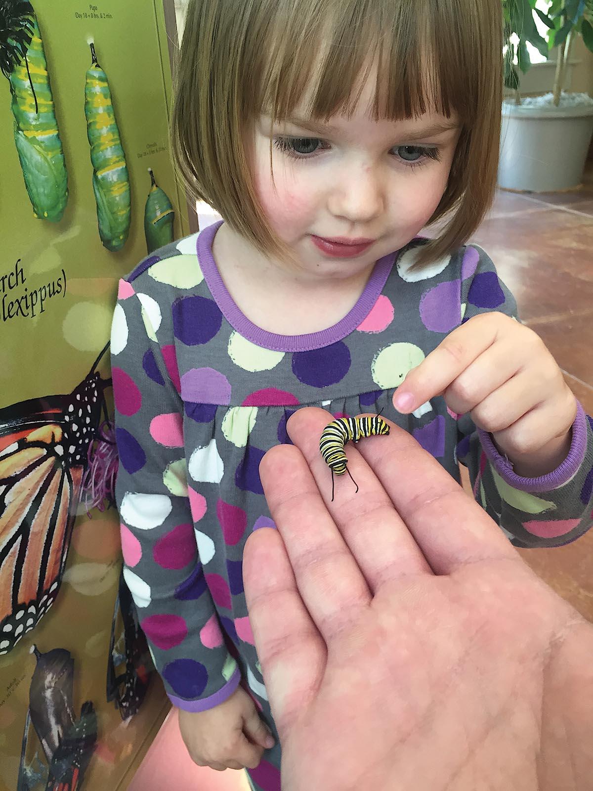 Girl looking at monarch caterpillar