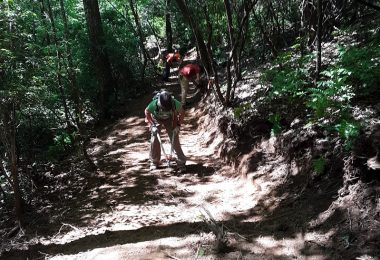Volunteers working on new trail. Photo courtesy of Conserving Carolina