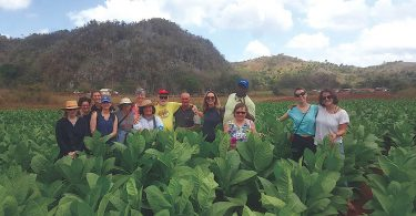 OGS and Food First Host Cuba Agroecology Tour