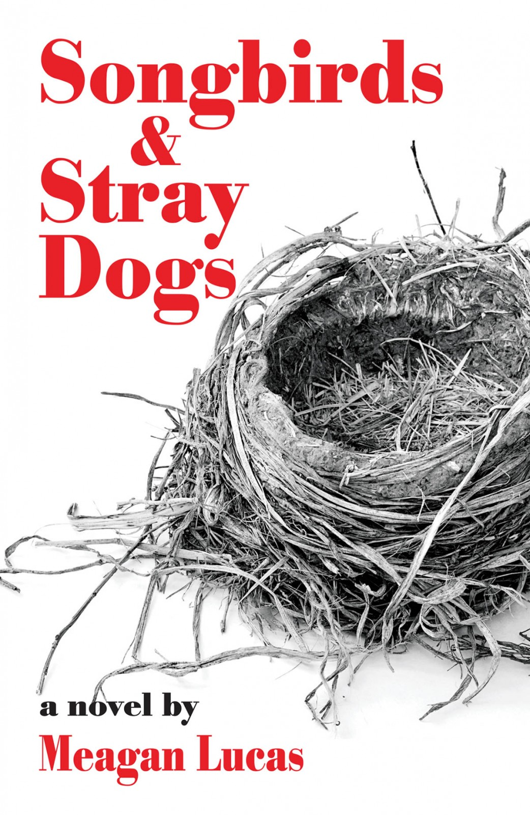 Songbirds and Stray Dogs