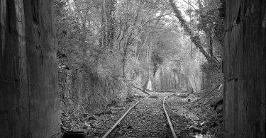 Tracks. Baxter Harrill, artist