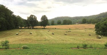 Farmland Conservation: Preserving Our Agricultural Heritage