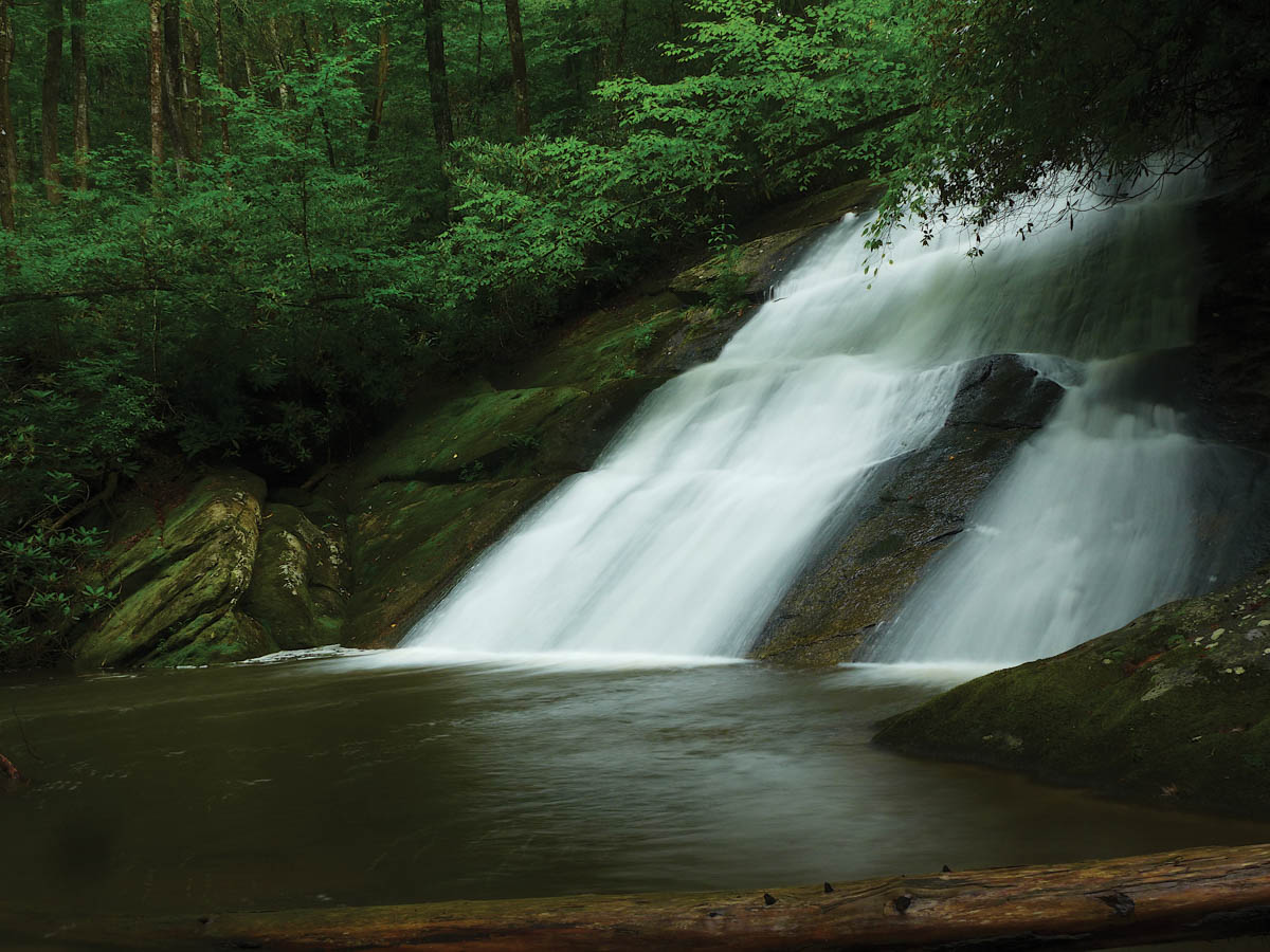 Paw Paw Falls in Gorges State Park