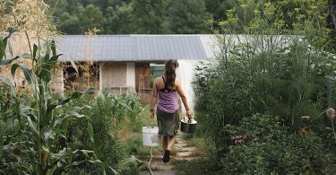 Organic Growers School Homestead Dreams Workshop