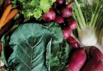 CSA Fairs in Asheville and Boone