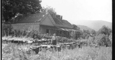 Digital Heritage Moment: Appalachian Beekeeping