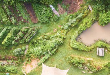 Wild Abundance Teaches Earth-based Skills