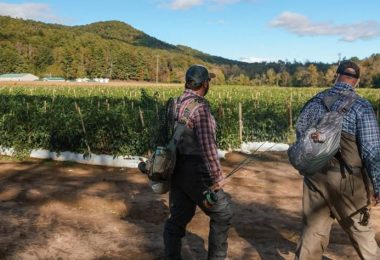 Farming and Outfitting to Protect and Conserve