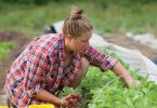 Eat Your View: In a Time of Uncertainty, Join a CSA