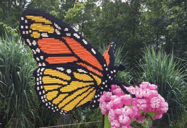 NC Arboretum's Nature Connects®: Art with LEGO® Bricks