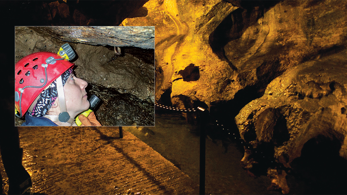 Sustainability: Caves