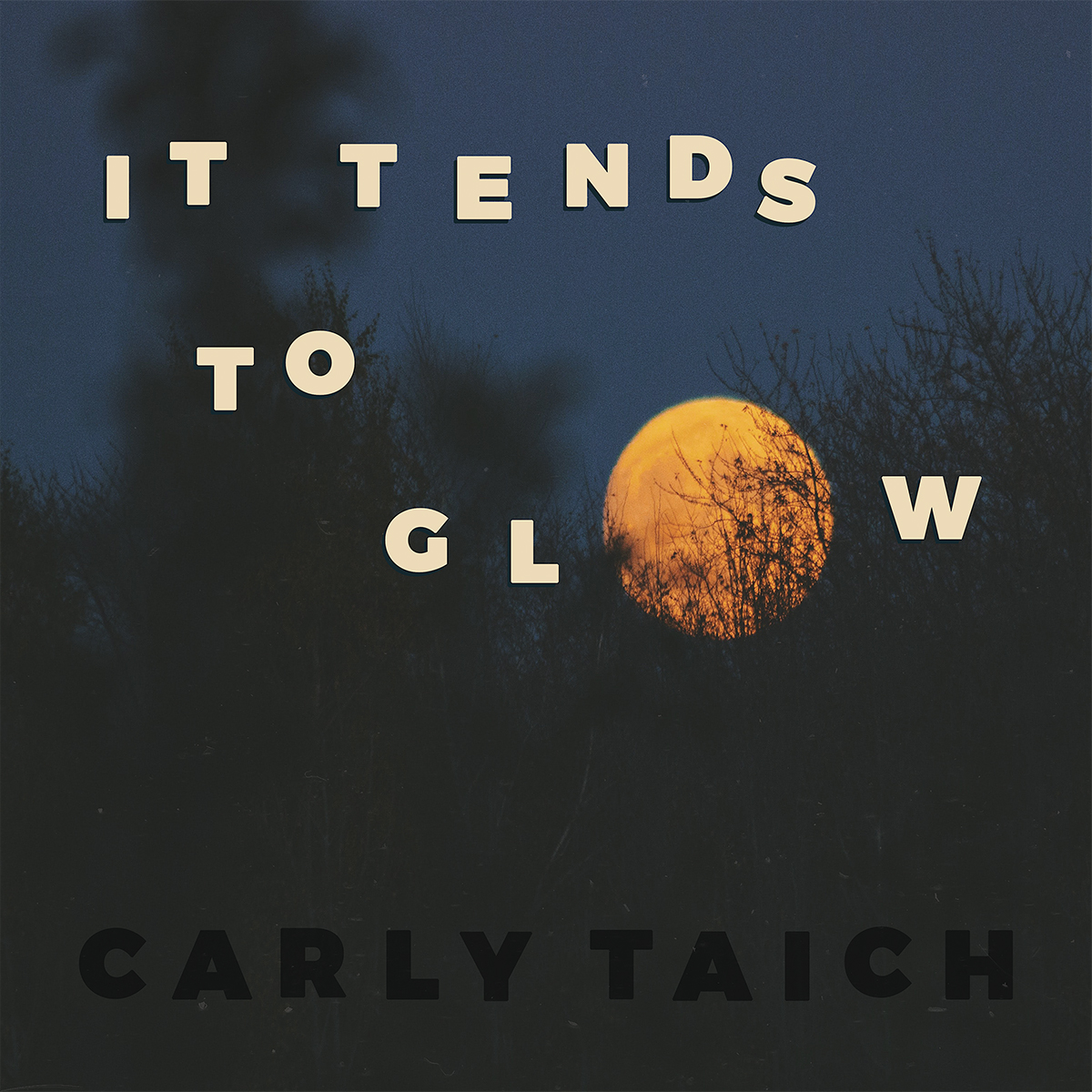 Music Feature: Carly Taich
