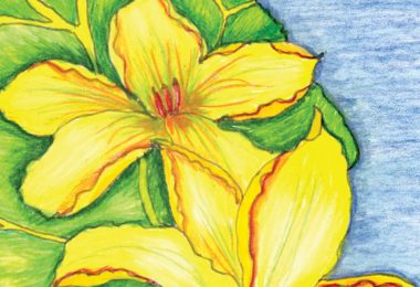 Literary Gardener: Georgia O'Keeffe
