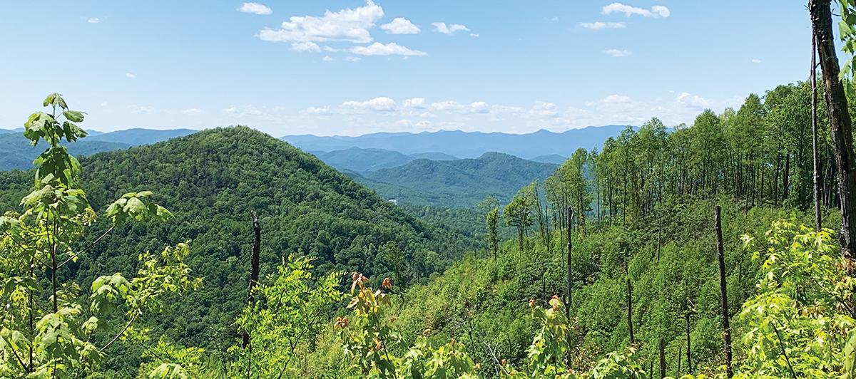 Wilderness Gateway Trail