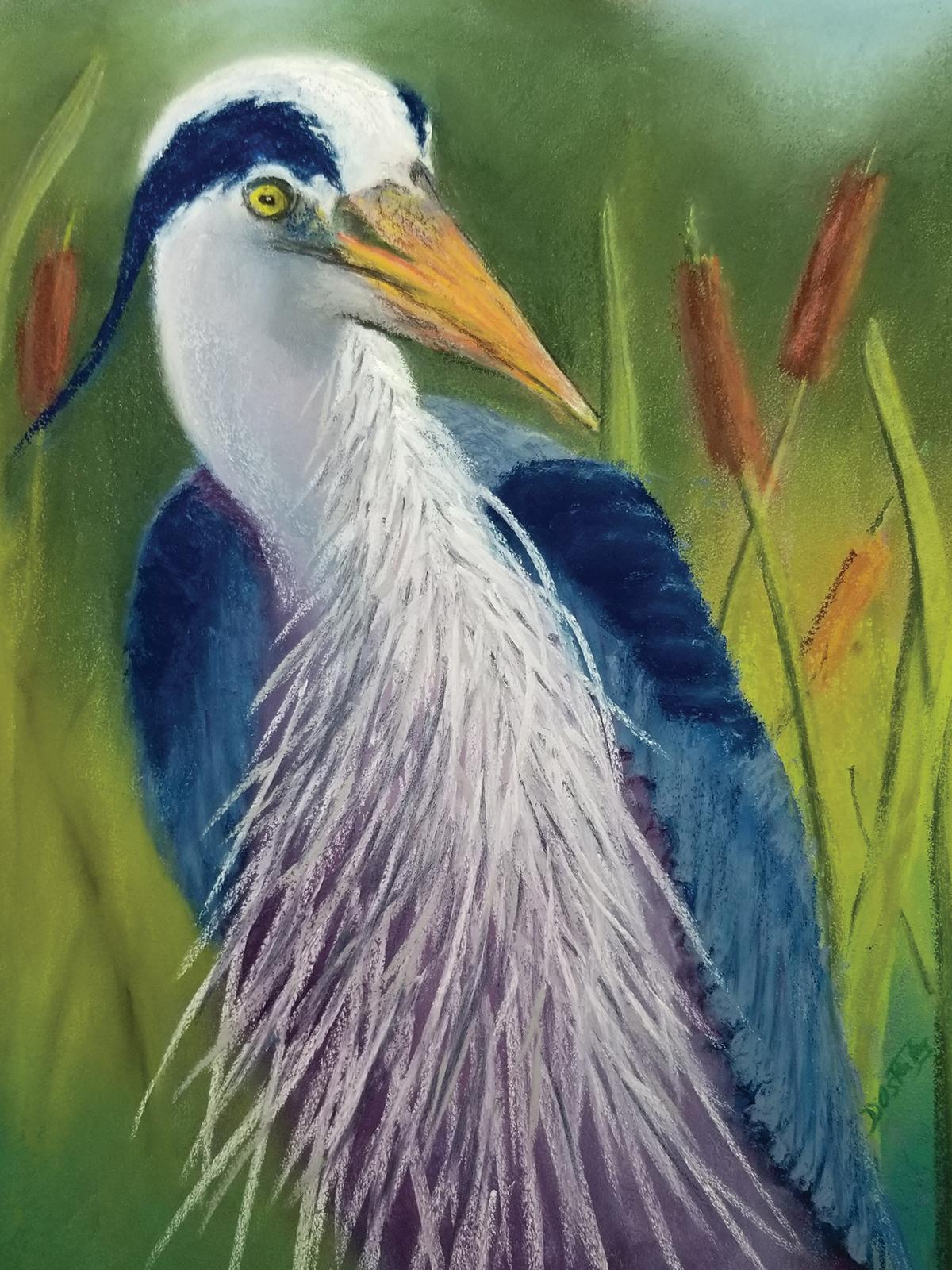 Art Mob: Bird Matters